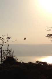 Sunrise over the Galilee